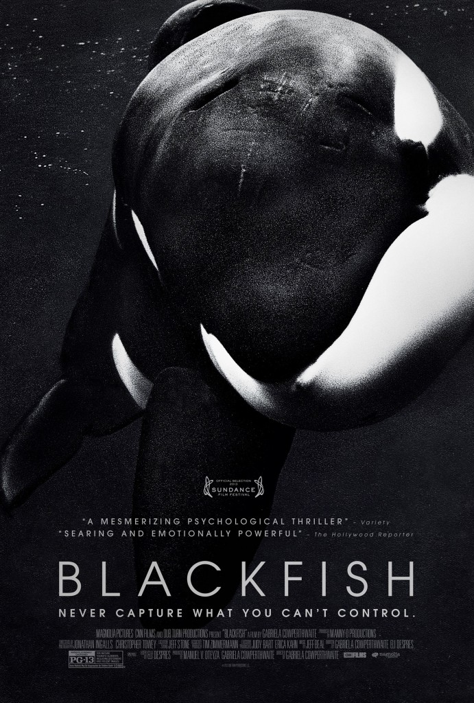 Blackfish_ 2013_ FlickMinute-Documentary