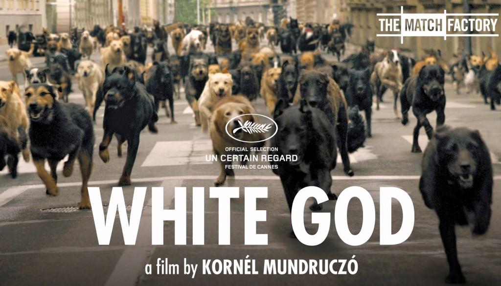 White-God_Foreign Film